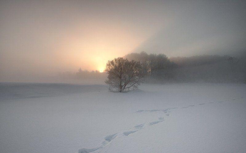 Мороз, Туман Mорозный туман...photo preview