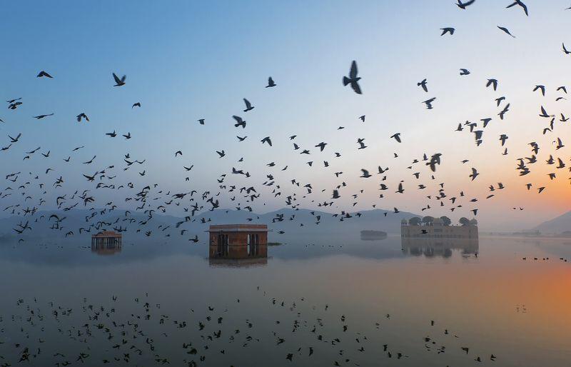 Ravikanth Kurma, India