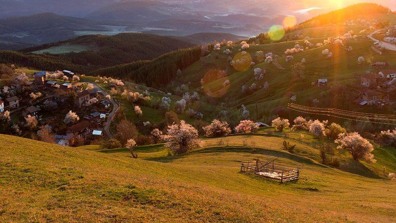 mountain, rodopi, болгария, вulgaria, гора, родопи Родопиphoto preview