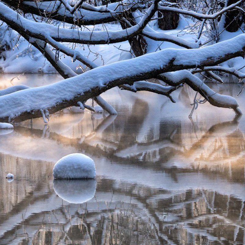 Дерево, Зима, Озеро, Отражение, Протока, Снег, Шатура Шатурские отраженияphoto preview