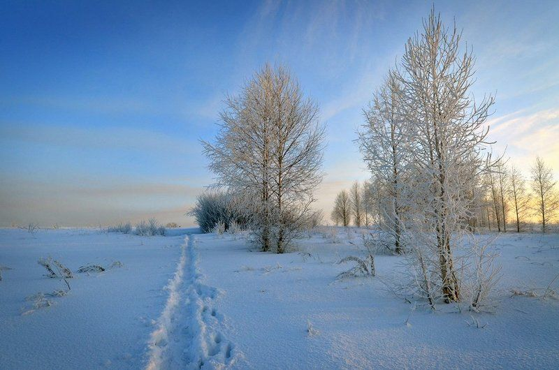 Вечер, Зима Зимний вечерphoto preview