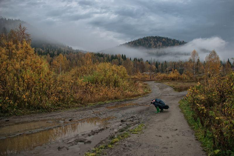 лужба осень горы туман утро  Осень в горахphoto preview