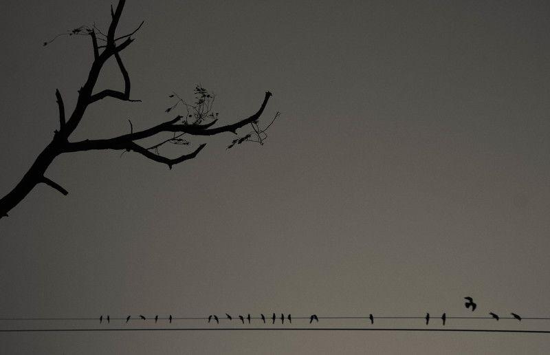 anoop gupta, India