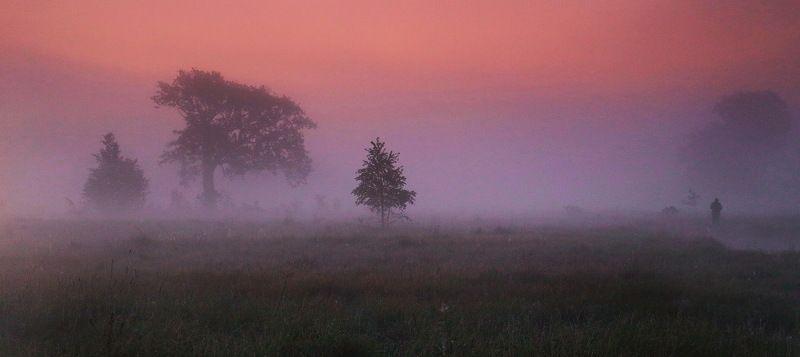 Неман, утро, туман, рассвет Воскресеньеphoto preview