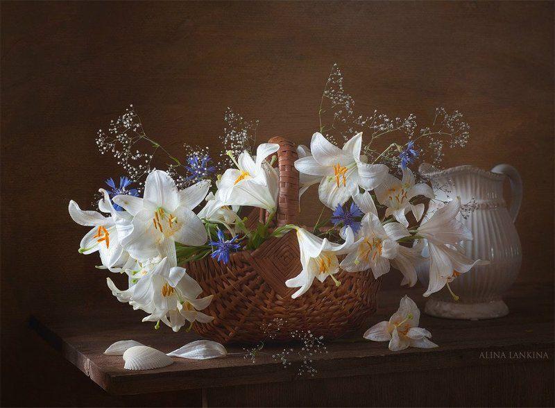 натюрморт, цветы, лилии, васильки, кувшин, корзина, лето, букет, алина ланкина ***photo preview