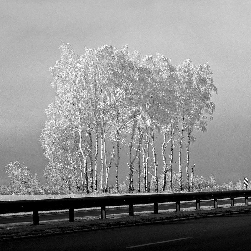 Дорога., Мороз., Снег. \