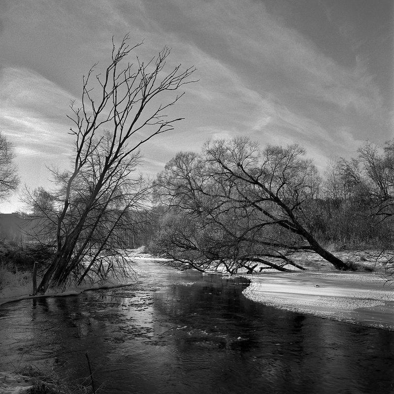 зима., лес., река., снег. \