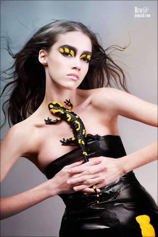 саламандра, девушка, тигр Саламандраphoto preview