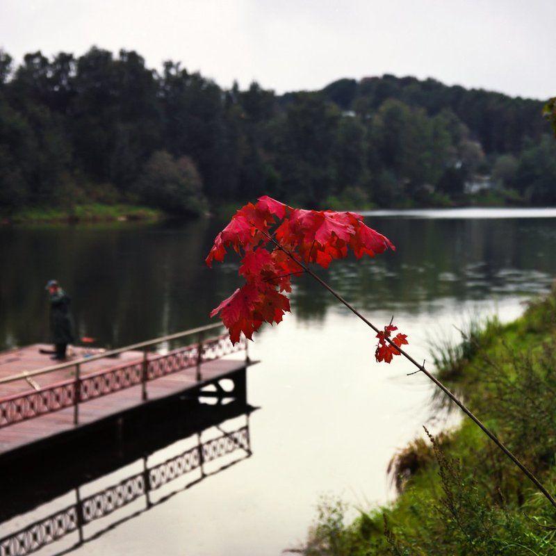 Озеро., Осень., Утро. \