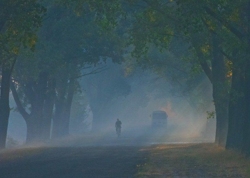 Автобус, Аллея, Велосипедист, Дорога, Лучи, Рассвет, Утро У каждого своя дорогаphoto preview