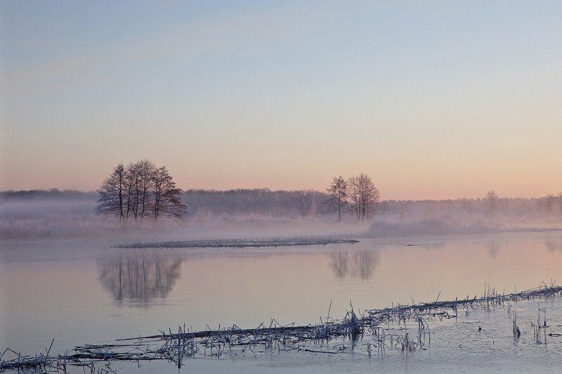 природа, река воронеж, туман после ледоходаphoto preview