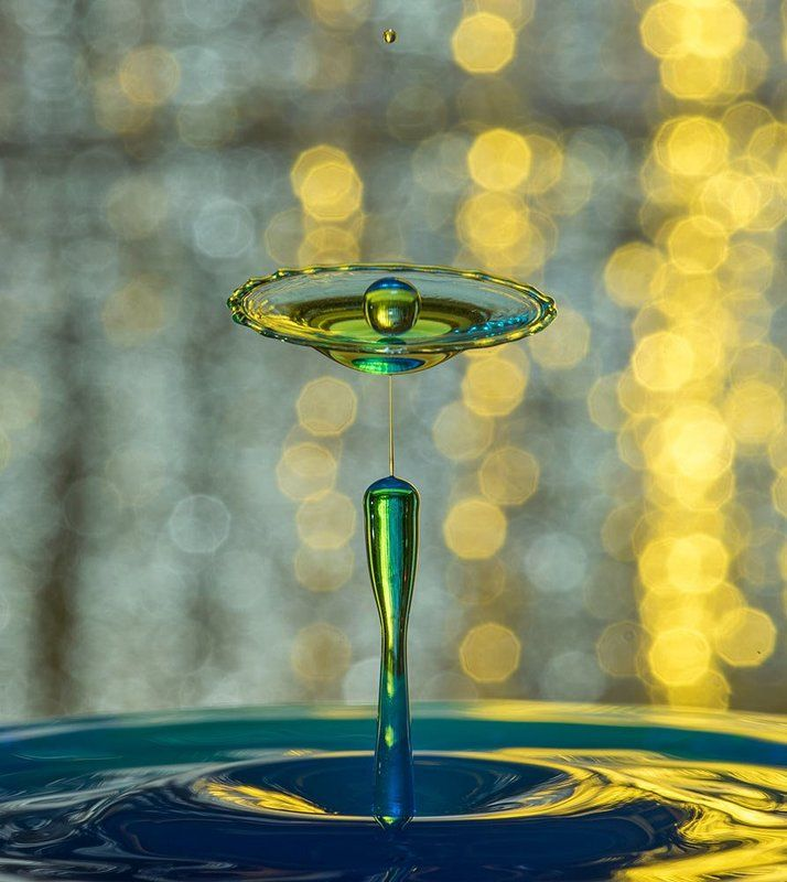 water,drop,splash,abstract, drop servicephoto preview