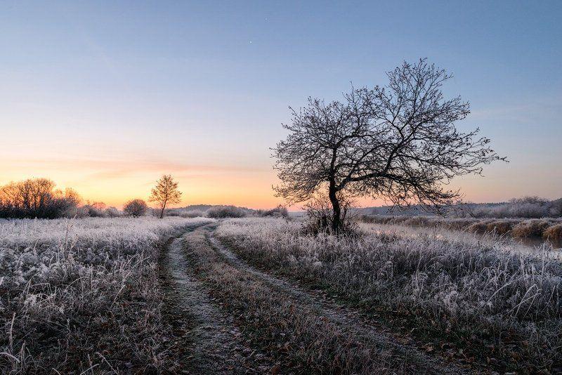 Однажды морозным утром...photo preview