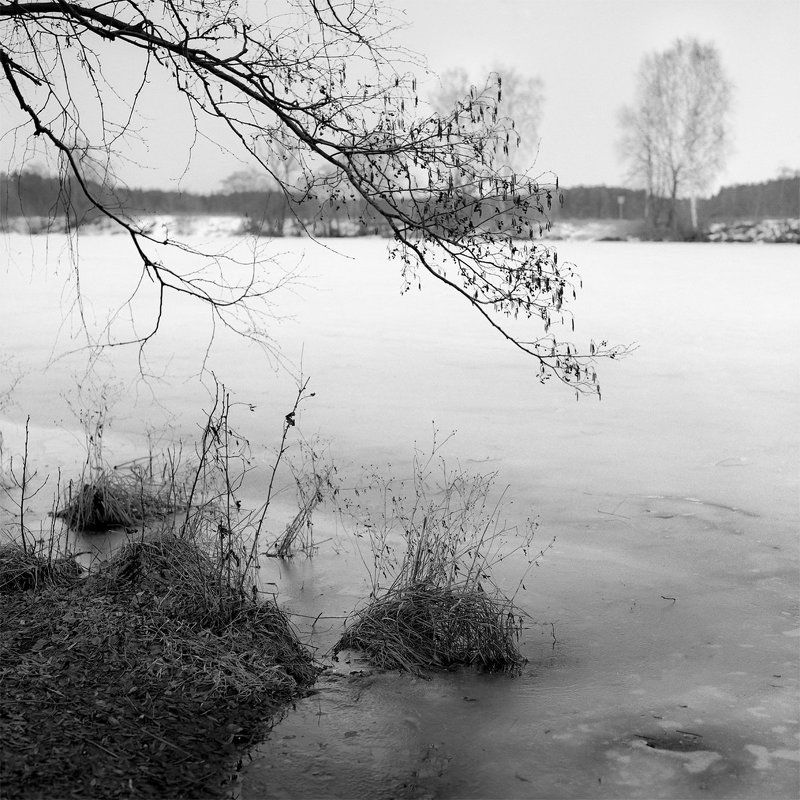 Архангельское., Весна., Река. \