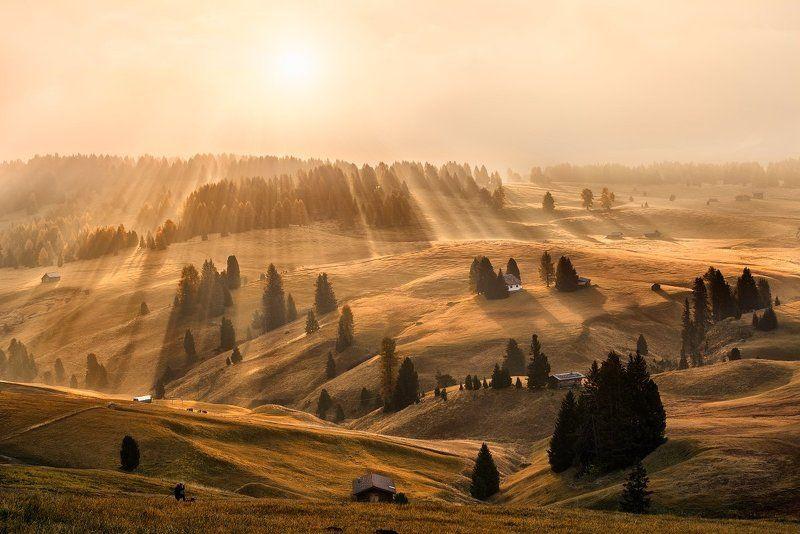 Dolomites, Italy, Alps, autumn, autumn landscape, beautiful place, travel, rays, meadows, sun, sunrise, tree, fog, mist, Alpe di Siusi Dolomitesphoto preview