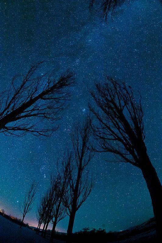 Страшные сны Иссык-Куляphoto preview
