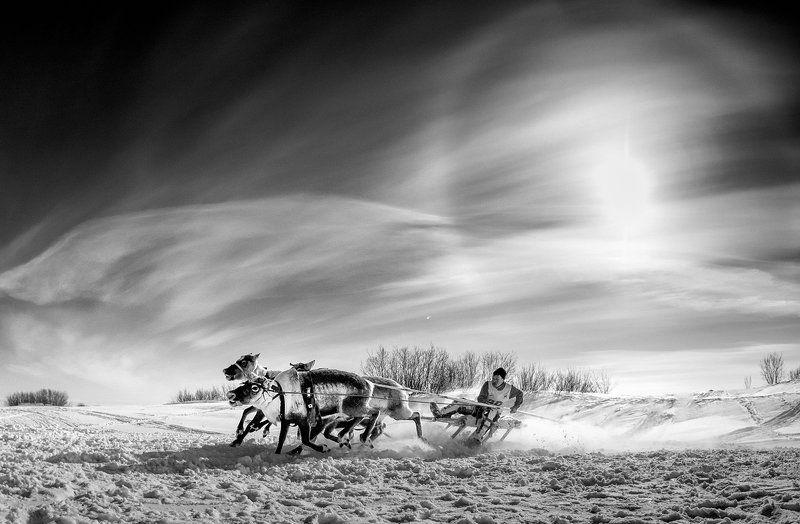 Черно-Белый Ямалphoto preview