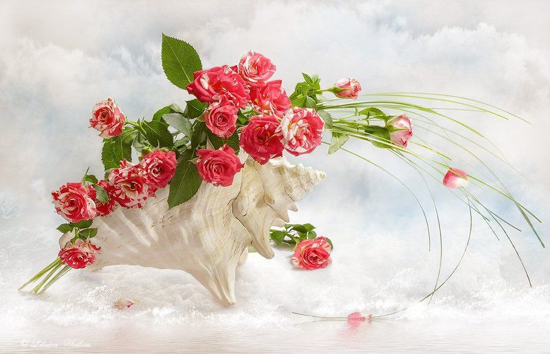 раковина, ракушки, розы, цветы Морская фантазияphoto preview