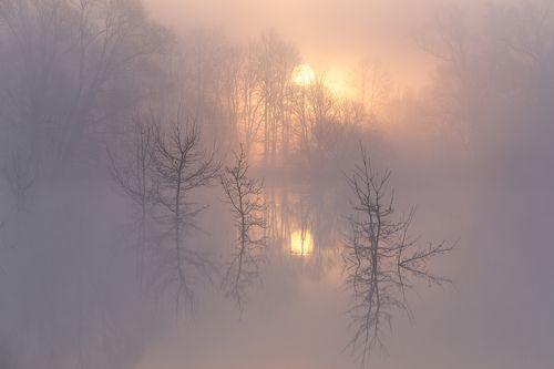 Очарование туманного утра