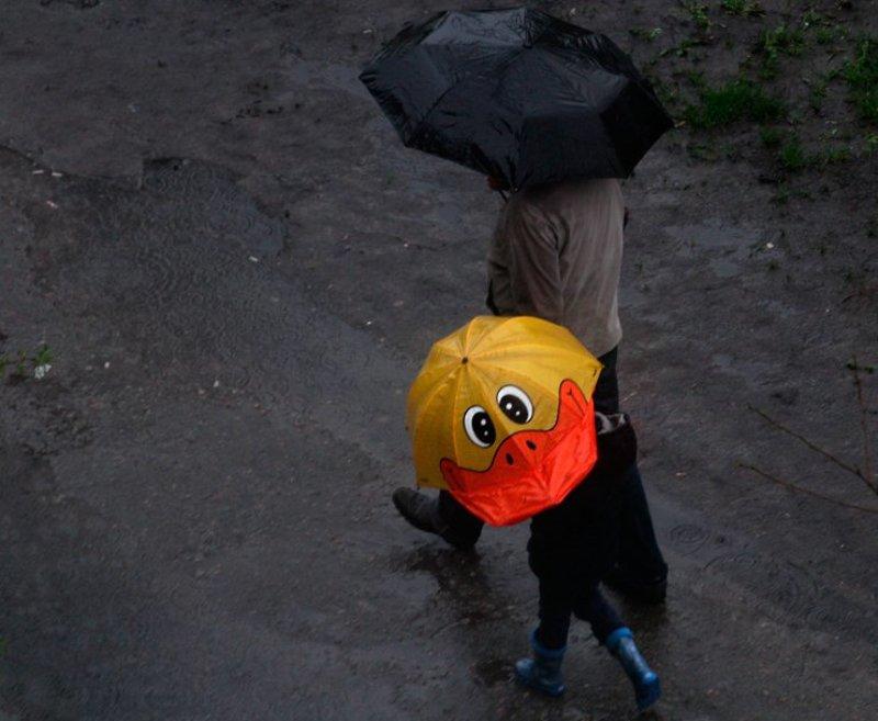 дождь от улыбки хмурый день светлей :)photo preview