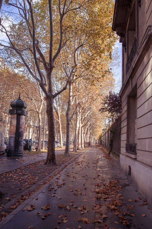 Paris, France rues de Parisphoto preview