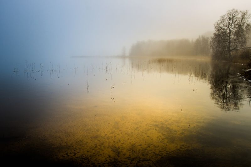 Morning at the lake.photo preview