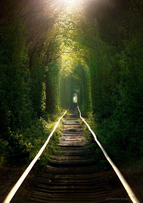Весна, Клевань, Туннель, Украина Восход солнца в туннеле любвиphoto preview