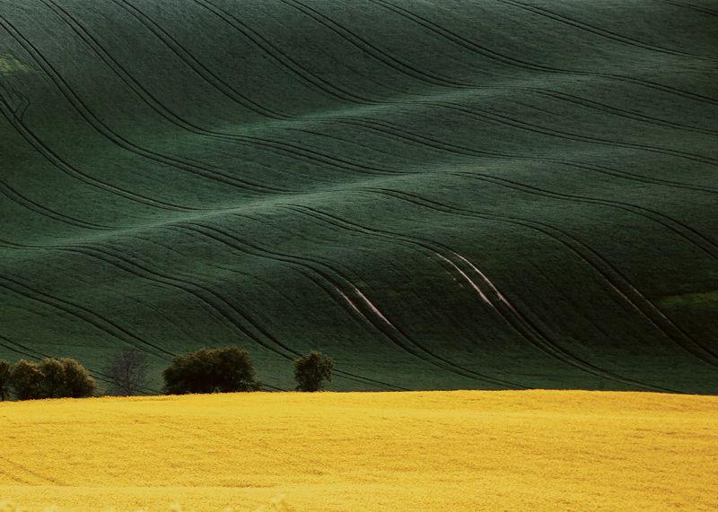 Moravia2016photo preview