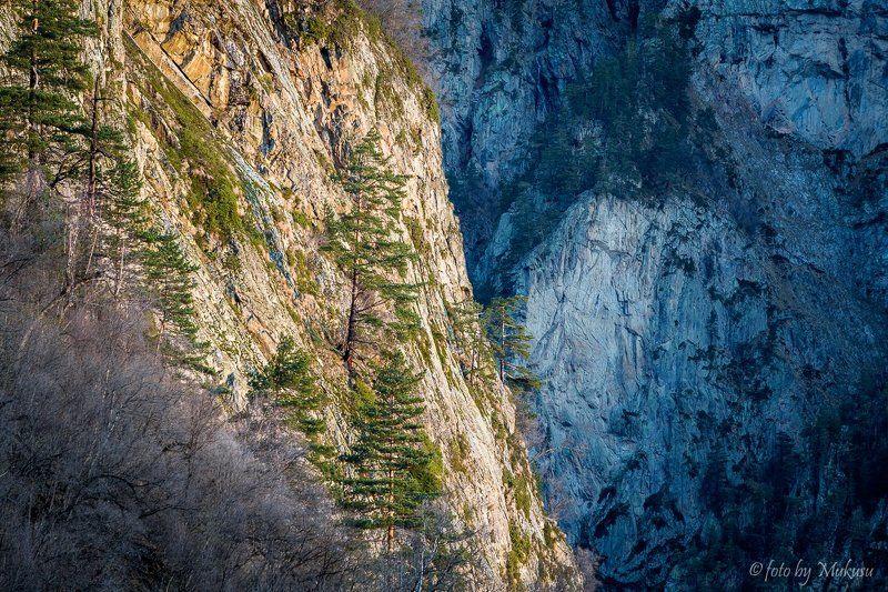 кавказ, цейское ущелье, горы, путешествия, природа, пейзаж Цейское ущельеphoto preview