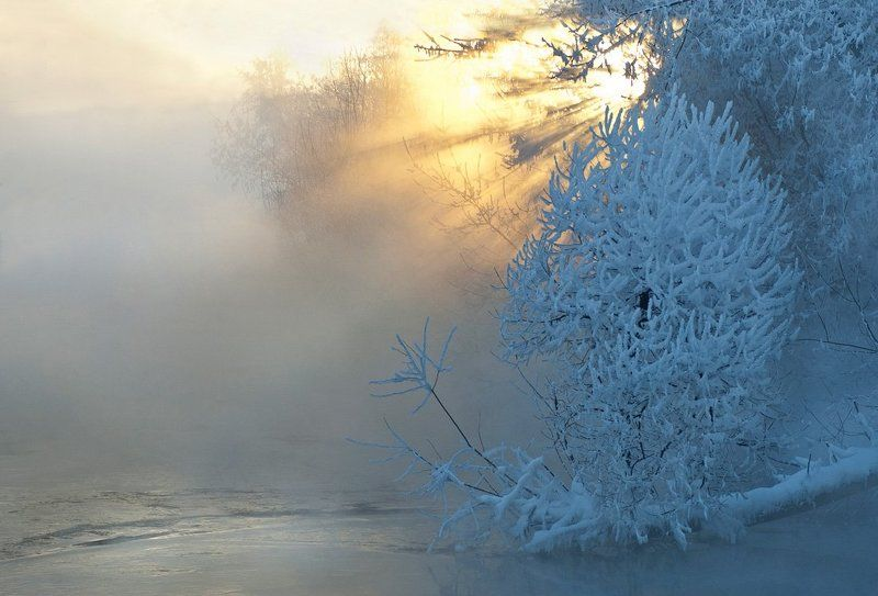зима, закат, иней, река, солнце, туман В первый день весныphoto preview