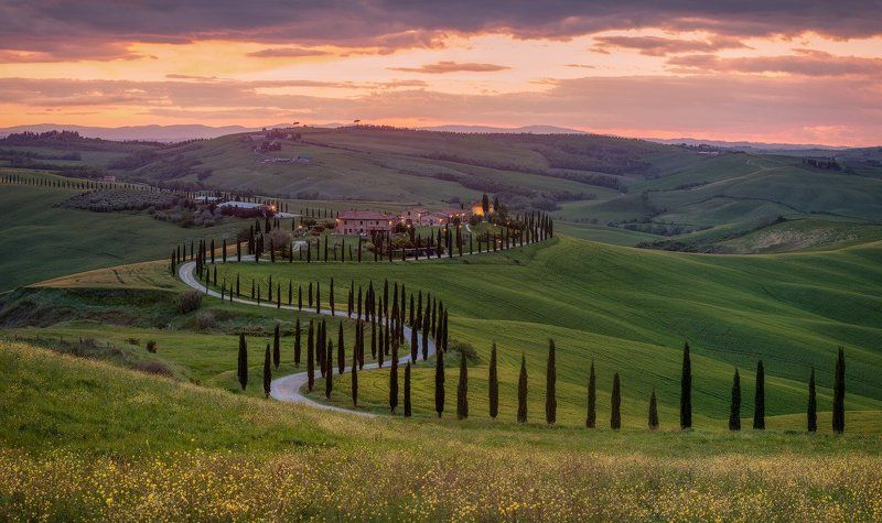 italy, tuscany, весна, италия, тоскана The way to home.photo preview