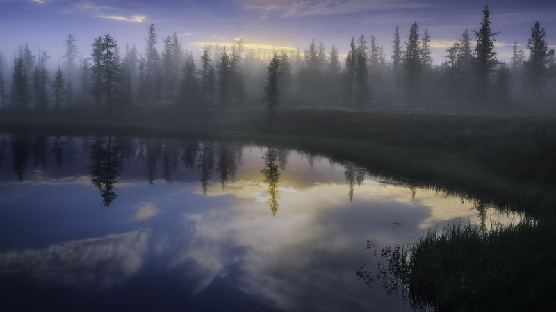 ямал, тундра, рассвет, туман, лес, отражение, canon, пейзаж Таёжное утроphoto preview