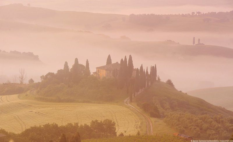 italy, tuscany, nature, landscape morning fogphoto preview