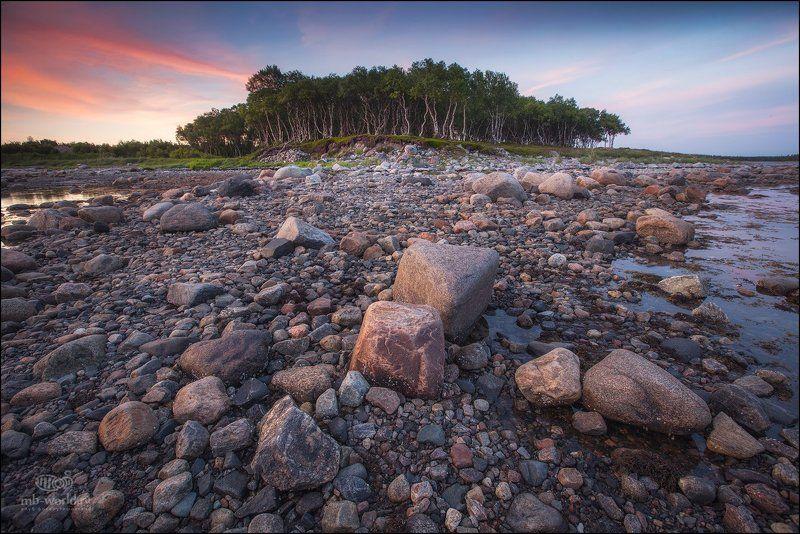 Россия, Соловки, пейзаж, закат Побережье Белого моря..photo preview