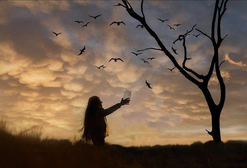дети, вечер, закат,птицы,поздно,природа,девочка Улетели!photo preview