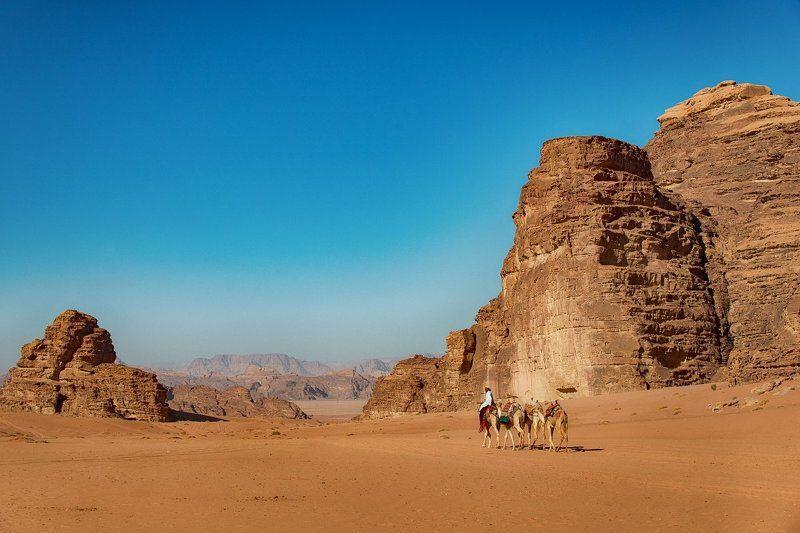 пусныня, иордания, вади рам, верблюд, бедуин Пустыня Вади Рам (Лунная долина). Иордания.photo preview