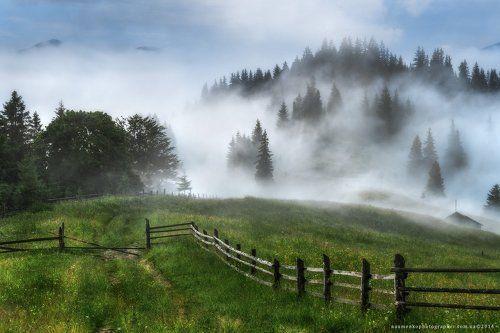 Украина. Карпаты. Дземброня. Дорога в туманный лес