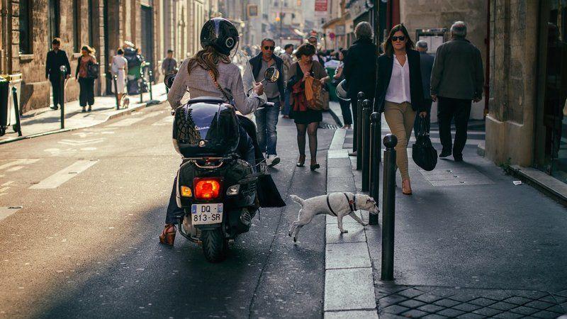 париж, подвезла, попудчик, улица Спасибо за то, что подвезла старичка!)photo preview