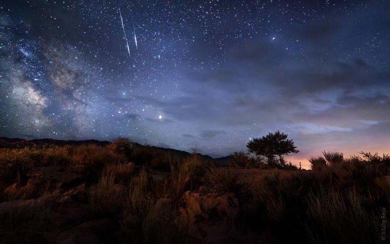 киргизия, иссык-куль, ночь, сова, млечный путь Про сову и метеоритыphoto preview