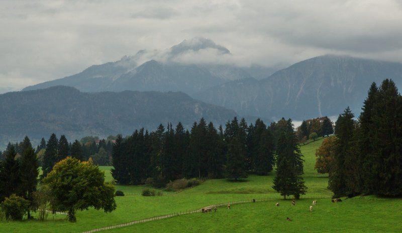 альпы, бавария, горы, долина, лес Баварская идиллияphoto preview