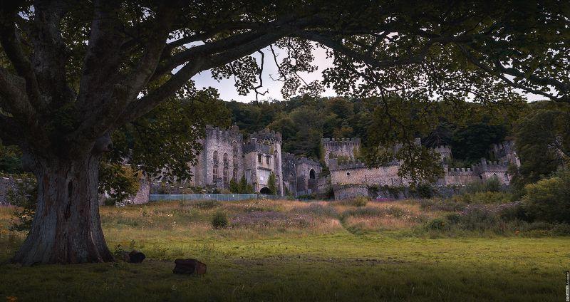 Заброшенный замок Грайч (Gwrych). Уэльс.photo preview