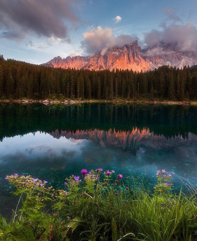 карезза, carezza, alps, альпы Озеро Кареззаphoto preview