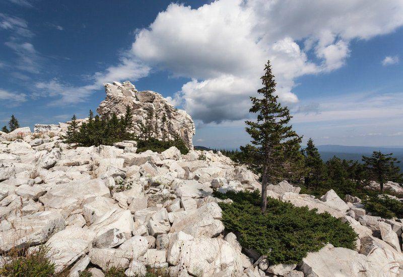 Гора камни елки облака Южный Урал лето Зюраткуль Каменные льдины на вершинеphoto preview