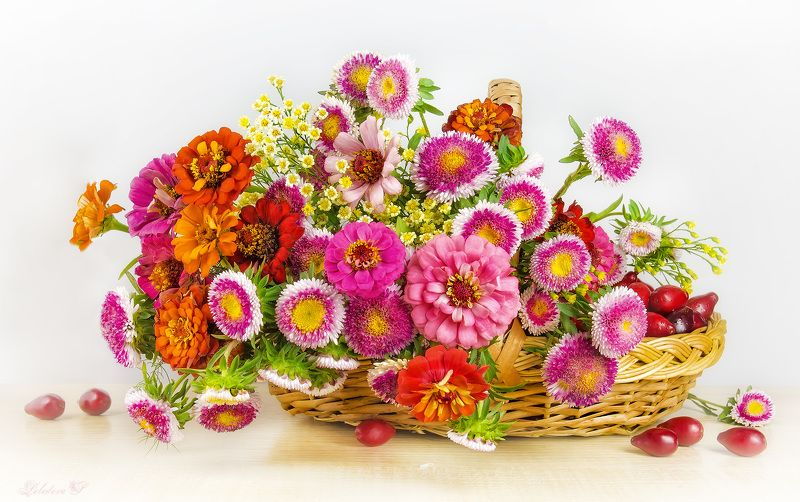 цветы,букет,корзина,кизил,цинния Цветочная феерияphoto preview