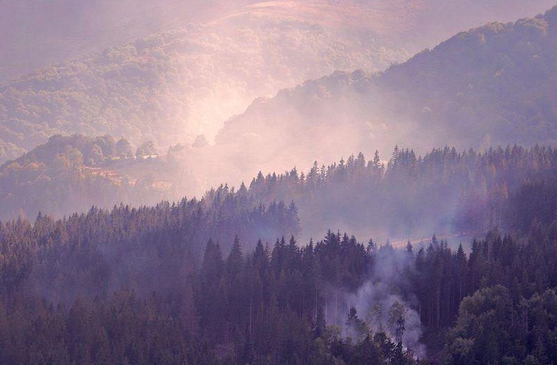 дым&дымкаphoto preview