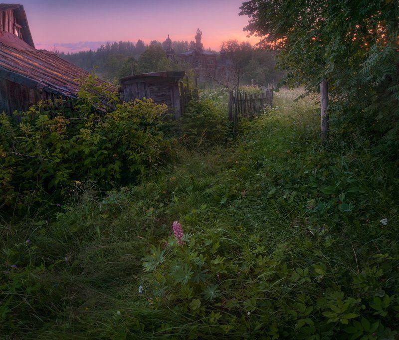 утро, деревня, рассвет, церковь Покинутый рассветphoto preview