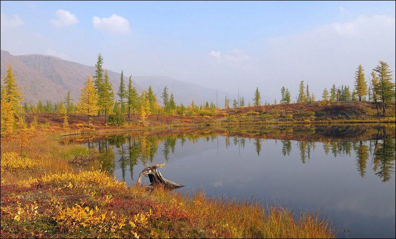 Осенний балphoto preview