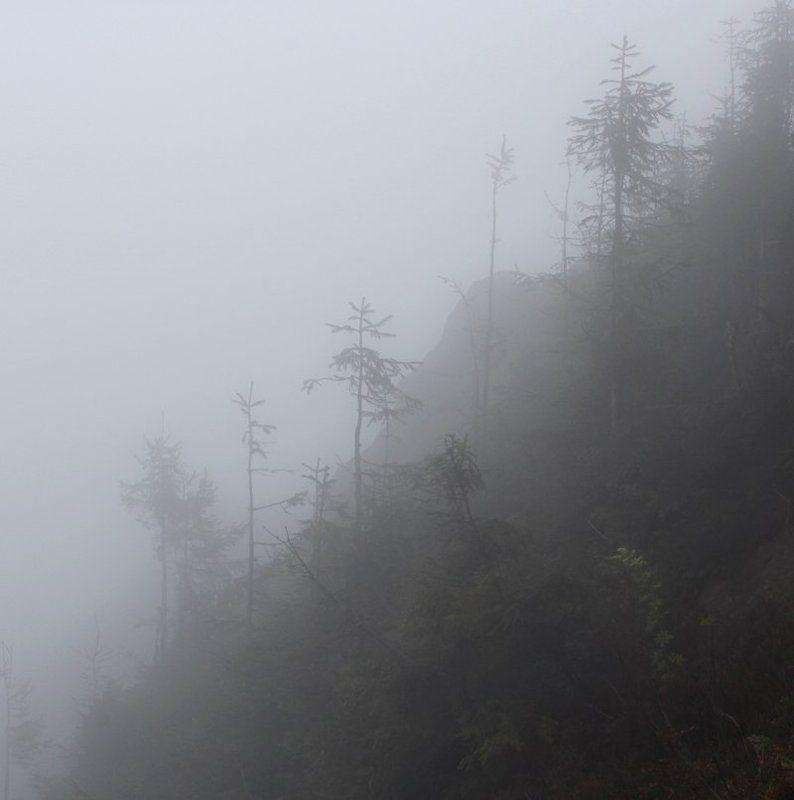 диагональ туманнаяphoto preview
