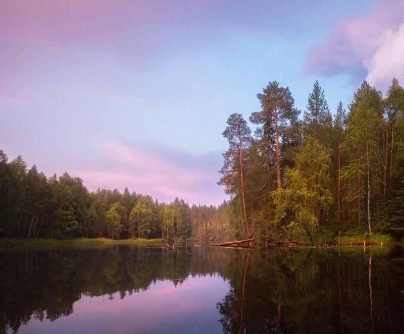 Вечер, небо, облака, карелия, вода, отражения, река, лес, сосны Во глубине сиреневых сумерекphoto preview