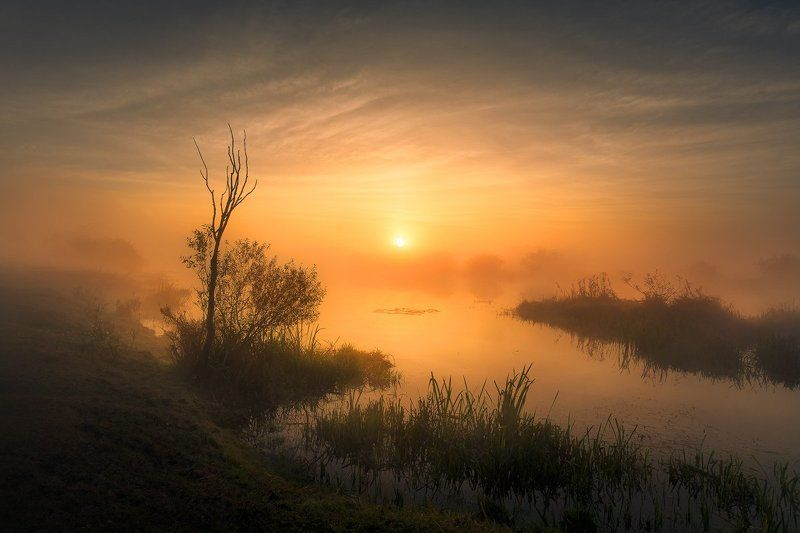 Calm, Dawn, Hardships, Hope, Longing, Magic, Morning, River, Soothing, Sun, Sunrise, Victory The Power of the Sunphoto preview